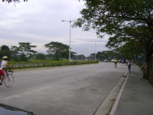 portion of las pinas-paranaque access road